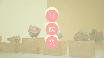 2021很可以_行跤花(kiânn-kha-hue)_閩南語版導覽影片